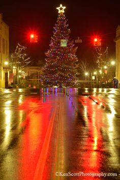 Traverse City Christmas Tree, Michigan - Love the way Christmas time is celebrated here