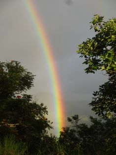 Rainbow in Princeville, Kauai