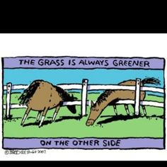 """""""The grass is always greener..."""" Horse Comic"""