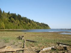 University Endowment lands of UBC - Wreck Beach in Vancouver