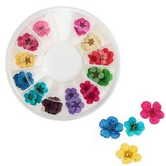 Colors Real Dry Dried Flower Acrylic UV Gel Nail Art Design Tips Decoration In One Wheel DIY *** Details can be found by clicking on the image.