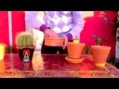 VIDEO MACETAS ABRIL ESPAÑOL.wmv Macetas con Sistema de Trasplante Fácil