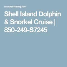Shell Island Dolphin & Snorkel Cruise   850-249-S7245