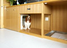 I love this creative way of hiding the dog kennel. It's an absolute necessity w. I love this creative way of hiding the dog kennel. It's an absolute necessity with our youngest Dog Kennel Cover, Diy Dog Kennel, Outdoor Dog, Indoor Outdoor, Dog Nook, Cool Dog Houses, Pet Houses, Wooden Dog Kennels, Wire Dog Crates