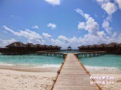 Andy與Zoe的旅行紀錄: 馬爾地夫之旅:CP值高的飯店島 Fihalhohi Island Resort(菲哈後島度假村)
