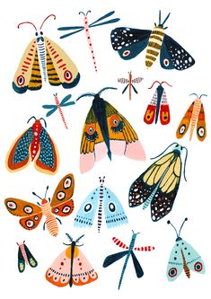 The Design - A Playful Woodland Design With The Best .- The Design- – Ein verspieltes Woodland-Design mit den besten Mottenarten. – T The Design – A playful Woodland design with the best moth species. Art And Illustration, Butterfly Illustration, Illustration Animals, Pattern Illustration, Woodland Illustration, Nature Illustrations, Drawings And Illustrations, Art Mural Papillon, Moth Species