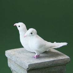 Make Scale Miniature Doves or Pigeons From a Range of Modelling Materials