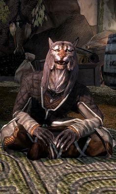 Khajiit Caravans - Elder Scrolls - Wikia