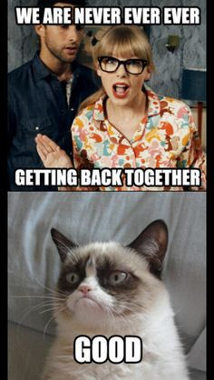 Grumpy Cat funny moments