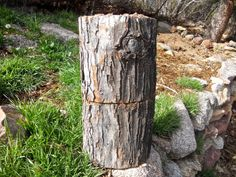 Log totems are another great way to grow mushrooms using your 100th Monkey Mushroom Farms mushroom garden kit