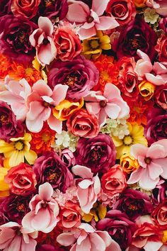 Colourful roses - Vicki Archer // https://www.instagram.com/vickiarcher/