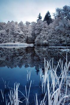 winter in the summer by WiciaQ.deviantart.com on @deviantART