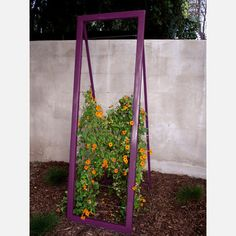 """Trellis idea for Chinese grape among other things.  24""""x70"""""""
