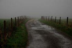 Near Winterbourne Abbas, Dorset, England