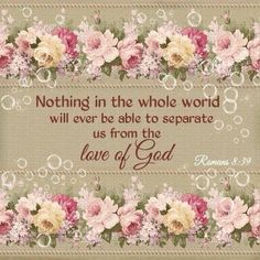 """nor height nor depth, nor anything else in all creation, will be able to separate us from the love of God in Christ Jesus our Lord."" ‭‭Romans‬ ‭ESV AMEN AND AMEN! Thank you sweet Dana. Biblical Quotes, Bible Verses Quotes, Bible Scriptures, Faith Quotes, Gospel Bible, Godly Qoutes, Faith Sayings, Simple Sayings, Courage Quotes"