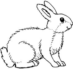 Great And Funny Rabbit Coloring Pages