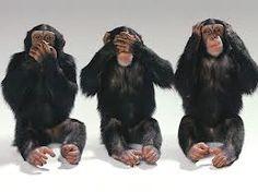 Risultati immagini per scimmia