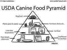 Canine Food Pyramid for-the-love-of-dog Dog Nutrition, Natural Dog Food, Dog Diet, Dog Shaming, Food Pyramid, Cartoon Dog, Dog Cartoons, Pet Treats, Homemade Dog