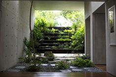 Indoor Garden With Gravel Decor In Tropical House Panoramic Contemporary House of Modern Age Home design