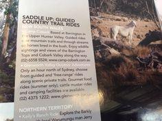 Horse treks Barrington Tops, Mountain Trails, Trail Riding, New South, Horse Breeds, Trekking, Travel Destinations, Wildlife, Horses