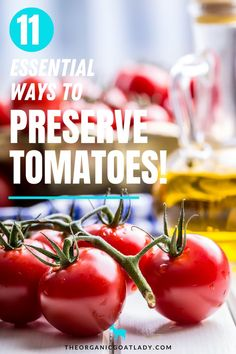 Are you growing tomatoes in your garden and need ideas on how to preserve them? Too many to eat? Too many to give away? Try these 11 ways to preserve tomatoes grown from your homestead garden. Complete with step-by-step instructions, preserving tomatoes can be fun, easy, and oh so tasty!! Preserving Tomatoes, Canning Tomatoes, Growing Tomatoes, Preserving Food, Homestead Gardens, Food Insecurity, Homestead Survival, Step By Step Instructions, Preserves