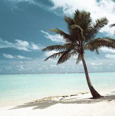 0600c1972e015d 1558 Best ocean beaches images