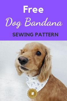 Free Dog Bandana Pattern DIY: for all Sizes! Great Over the collar Free Dog Bandana Pattern. A very easy tutorial with a free printable patter in sizes xs to xl. Learn How to make this amazing Fabric Project for your Dog in only 8 steps. Sewing Patterns Free Dog, Free Sewing, Sewing Hacks, Sewing Tutorials, Sewing Tips, Sewing Ideas, Sewing Crafts, Puppy Bandana, Bandana Bib
