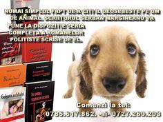 MONEYFUN: RECOMANDARE-CARTI DE CITIT