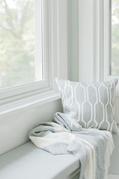 window-seat Walls Sherwin-Williams Sea Salt SW 6204 Trim Sherwin-Williams Pure White