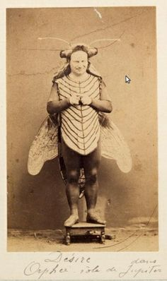 It's the great-great-grandfather of Blind Melon's bee girl!