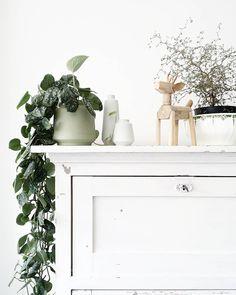 styling door Lisanne van de klift Hanging Plants, Indoor Plants, Living Room Kitchen, Kitchen Interior, Interior Inspiration, House Plants, Interior Decorating, Instagram Posts, Table
