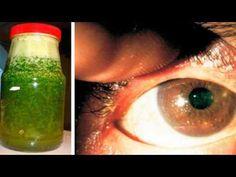 Esta planta te mejora la visión aunque tengas 70 años - Increíble pero cierto…