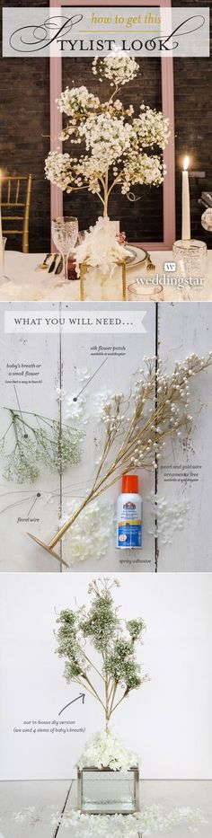 stylist baby's breath flowers elegant diy wedding centerpices