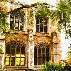 Luminous Windows University of Michigan Law Quad  Ann Arbor, Michigan.
