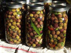 Read all of the posts by Jorin Hawley on Conscious Food Choices Pickled Olives, Olive Recipes, Jam And Jelly, Home Canning, Olive Tree, Healthy Drinks, Food Styling, Preserves, Pickles