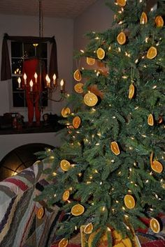 Dried orange slices~