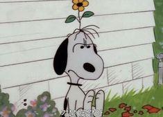 Cartoon Wallpaper, Disney Wallpaper, Vintage Cartoons, Cool Cartoons, Cartoon Icons, Cute Cartoon, Snoopy Pictures, Lobe, Snoopy Quotes