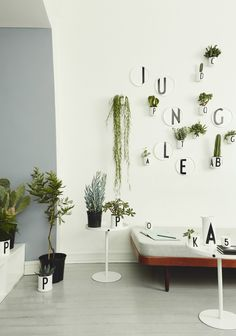 Plant Pots from Design Letters & Friends