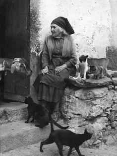 Del facebook.La cabra,la vieja y los gatos.Fotos antiguas.Islas Canarias.