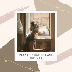 All plants have the ability to purify the air. However, some plants do it more than others. Here you can read about the best luffing plants. Place them in your home and they will automatically clean the air. All Plants, Air Purifier, Tech, Cleaning, Home Cleaning, Technology