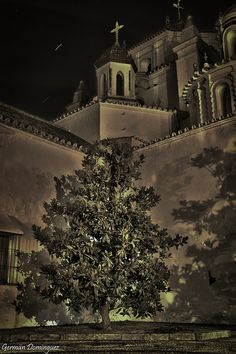 german-dominguez: the church of San Francisco in Palma del Rio, Spain
