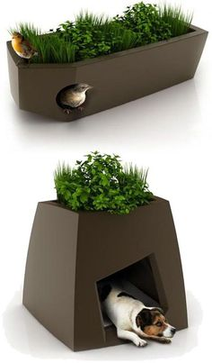 Love this idea!   Bird houses in planters.