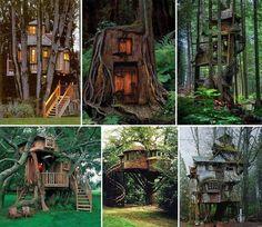 treehouses NEED NEED NEED