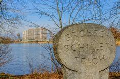 Wolfsburg am Teich, Niedersachsen, Deutschland