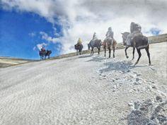 www.elfoton.com #elfoton14 @elfoton_es #categoria #Aventura Usuario: jmpznz (Argentina) - Cabalgata Los Andes V - Tomada en Mendoza el 02/01/2014