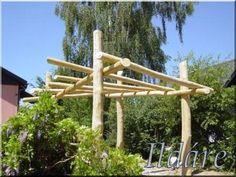 Zulu fakerítés - Fa a kertben