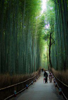 Spiritual Walk - Bamboo Grove - Arashiyama, Kyoto, Japan