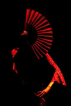 I love flamenco. Don't know if it is the movement, the drama, the sounds, or all of that rolled together but this photo captures it. http://www.coactivedreams.com/about/