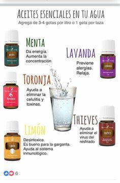 Aceites esenciales en el Agua Young Living Thieves, Young Living Oils, Young Living Essential Oils, Esential Oils, Young Life, Doterra Essential Oils, Medicinal Plants, Aromatherapy, Google