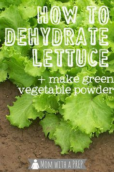 Points You Should Know Prior To Obtaining Bouquets Mom With A Prep How To Dehydrate Lettuce - Seriously.Why On Earth Would Anyone Want To Dehydrate Lettuce? My Answer? Since I Can Find Out More Here. Dehydrated Vegetables, Dehydrated Food, Canning Recipes, Canning 101, Canning Jars, Jar Recipes, Freezer Recipes, Drink Recipes, Salad Recipes